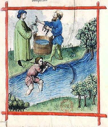 Tacuinum Sanitatis, 15ος αιώνας