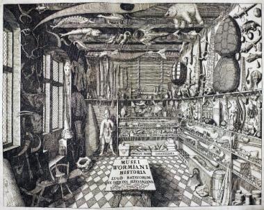 Από το «Museum Wormianum» του Ole Worm (1655)