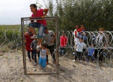Σύρος πρόσφυγας πηδάει τον φράχτη, στα ουγγροσερβικά σύνορα, κοντά στο Ασοθάλομ. Φωτογραφία: Laszlo Balogh/Reuters