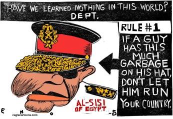 Σκίτσο του Randall Enos (Cagle Cartoons)