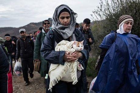 Eιδομένη, Μάρτιος 2016. Φωτογραφία του Κωνσταντίνου Τσακαλίδη/SOOC (πηγή: Al Jazeera)